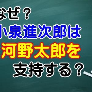 なぜ?小泉進次郎環境相が河野太郎防衛相を支持する理由