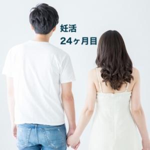 【体験談】妊活生活24ヶ月目。やっぱり行動することが大事!
