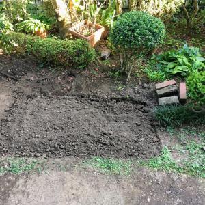 【1㎡畑チャレンジ】8月:庭に畑を作りました