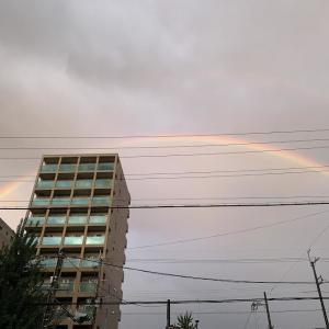 FXと虹♪