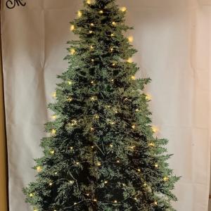 FXとクリスマスタペストリー♪
