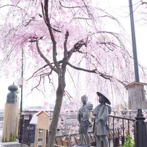 京都・三条大橋西岸へ