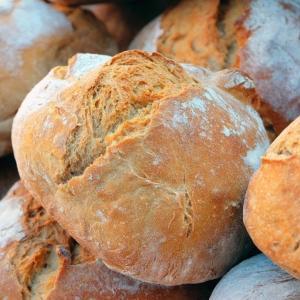 パン工場でのアルバイト経験談~発達障害者にパン工場の仕事は向いているのか?~