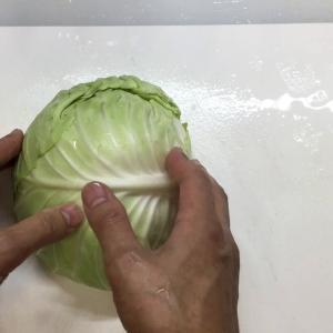 千円からのキャベツダイエットの必須アイテムはこれだ!