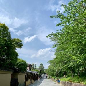 散歩*八坂*