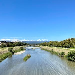 鴨川がきれい
