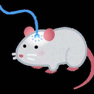 記憶は刷り込むことができる【脳科学】【遺伝子】