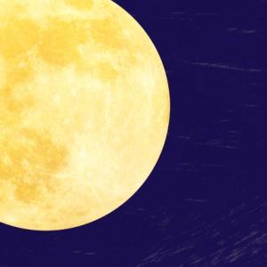 気取らない親しみのフワフワスイーツ|萩の月