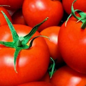 まさかのトマトがゼリーに!?新感覚スイーツ 太陽いっぱいの真っ赤なゼリー
