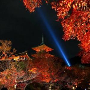 紅葉が美しい!清水寺の秋の夜間ライトアップについて