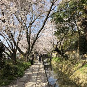 哲学の道へアクセス 京都駅からの行き方(バス・電車・タクシー)
