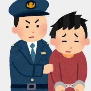 片瀬那奈さんの交際相手が薬物所持で逮捕