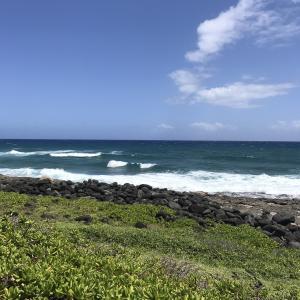 【ハワイおすすめスポット】絶景すぎるトレッキングコース「カエナポイント」