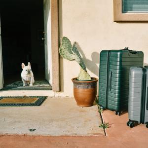 【旅行の時にお得!】スーツケースレンタルのメリット