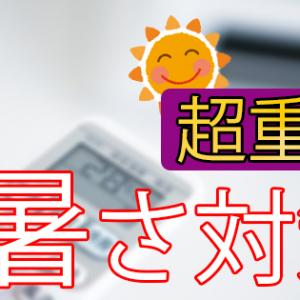 【超重要】うさぎの暑さ対策5選!夏をしのぐ「おすすめグッズ」