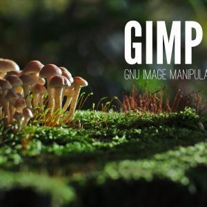 画像編集のフリーソフトGIMP(ギンプ)をダウンロード・インストールする方法【Mac・Windows】