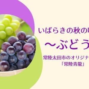 【茨城でぶどう狩り】常陸太田市のオリジナル品種も買える直売所も紹介