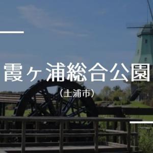 【霞ヶ浦総合公園】駐車場・アクセス・園内情報!無料で遊べるおすすめスポット(土浦市)
