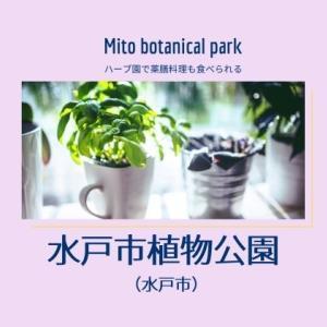 【水戸市植物公園】ランチは薬膳料理?鑑賞大温室が2021年にリニューアル