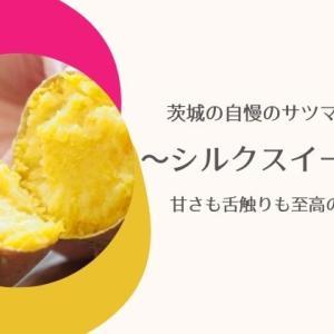 【シルクスイート】茨城県のさつまいも自慢!特徴・おすすめの食べ方・栄養