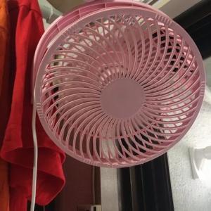 キキピン、扇風機を拭く。