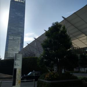東京駅も人だかり