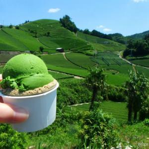 【和束】dan dan cafe と 石寺の茶畑<お茶の京都日帰り一人旅>