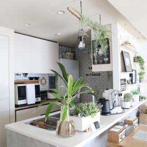 【キッチン】貼ってはがせる壁紙シールでナチュラルなカフェ風に♪