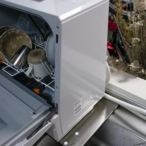 アトピー治療よりも食洗器買ったほうがアトピー改善した話