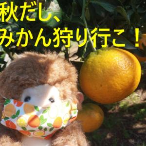 横浜でみかん狩り 芝口果樹園に行ってきたよ