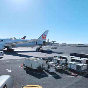 JAL海外ダイナミックパッケージツアーの「選べる便名プラン(日本事前申込要)」