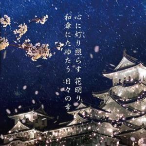 姫路城夜桜会2021「和傘幻想 華灯り」開催