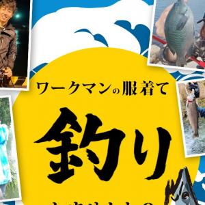 コスパ最強! ワークマン2021年NEWモデル ・:*+.\(( °ω° ))/.:+
