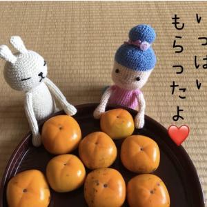 大量入手【柿の保存方法❤️】