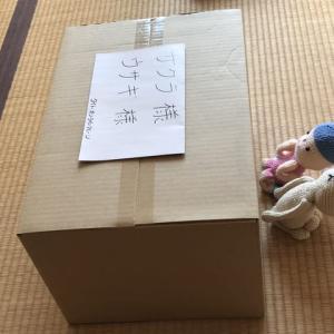 奇跡ふたたび‼️無料で1発GET!【タイトーオンラインクレーンゲーム】