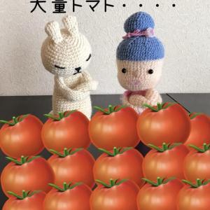 大量トマト救出レシピ❤️【トマトシャーベット】