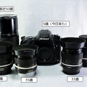D600、買っちった (*´ω`*)
