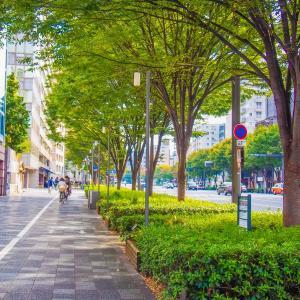 コロナ禍の散歩はOK?散歩好き歴30年が考えるウォーキングや街歩きの注意点5つ