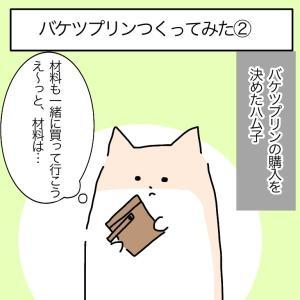バケツプリンを作った話②【甘くみてた材料編】