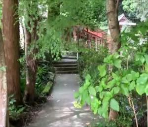 滝行ができる場所 不入道観世音寺・不入道の滝