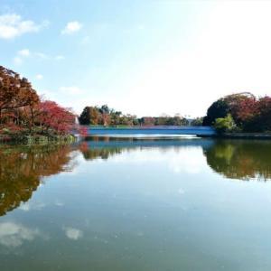 徒然草風に 水に映る紅葉と遊んでみました♪