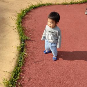 公園で遊ぼう!