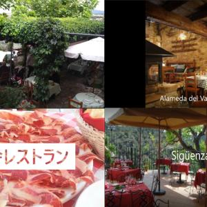 スペイン理想のレストラン☆マドリ-ドから日帰り編