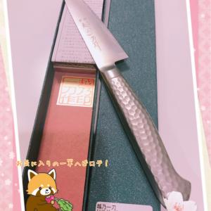 新潟で買った包丁を合羽橋で研いでもらったら刺身包丁が欲しくなった。