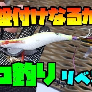 タコ釣りのコツを徹底解説!!