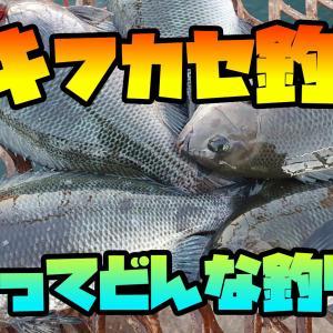 ウキフカセ釣りについて語りたい!!(初心者目線)メジナ・クロダイ