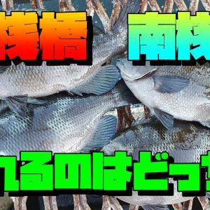 東桟橋・南桟橋どちらが釣れる?磯子海釣り施設 横浜