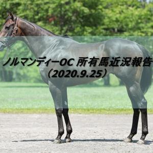 ノルマンディーOC 所有馬近況報告(2020.9.25)