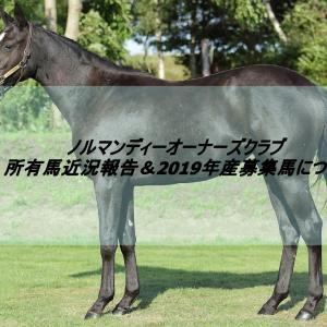 ノルマンディーOC 所有馬近況報告(2020.10.23)&2019年産募集馬について