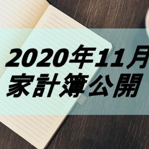 2020年11月 家計簿公開【ネットビジネスのおかげ】